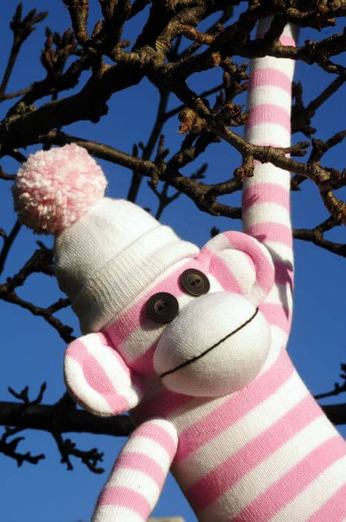 How to sew a Sock Monkey sewing pattern